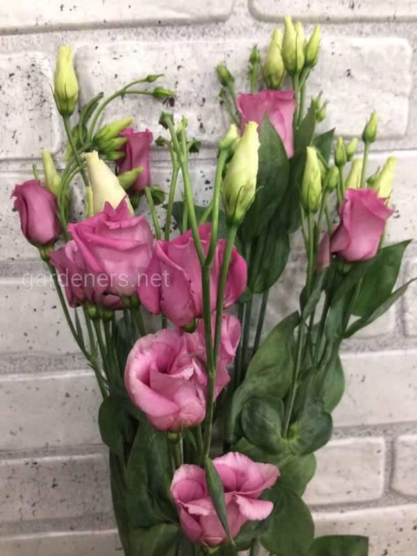 Как овежить увядшие цветы?