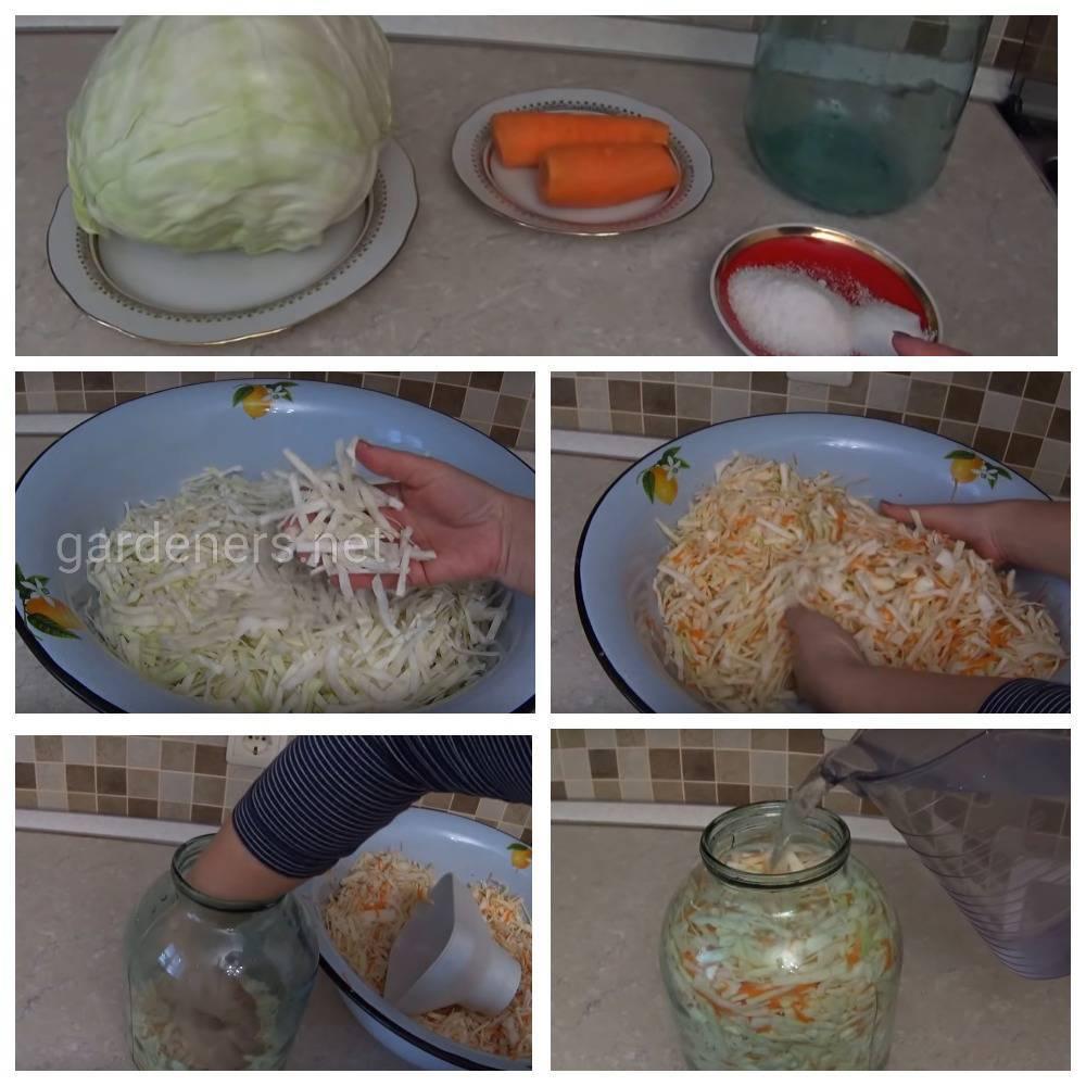 Самый быстрый рецепт квашенной капусты