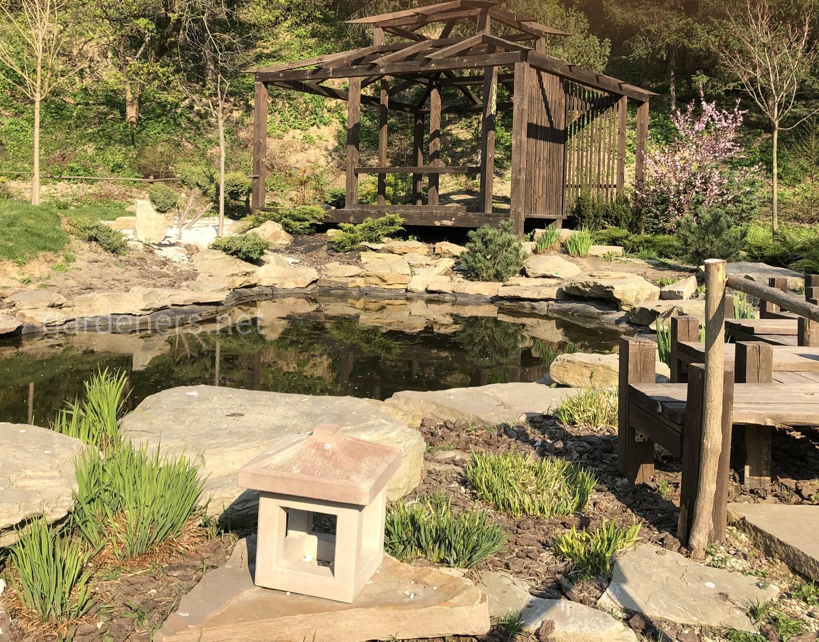 Японский уголок, Ботанический сад им Гришка