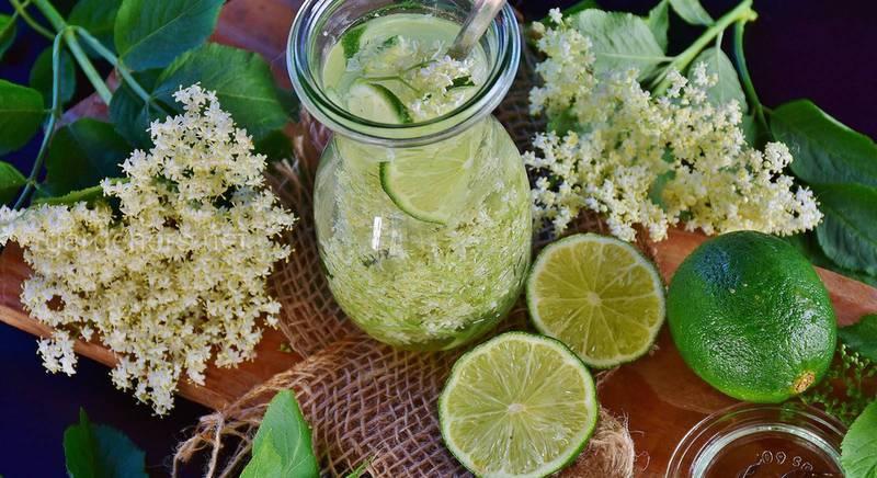 Лимонад из бузины: рецепт, который сохраняет все полезные свойства