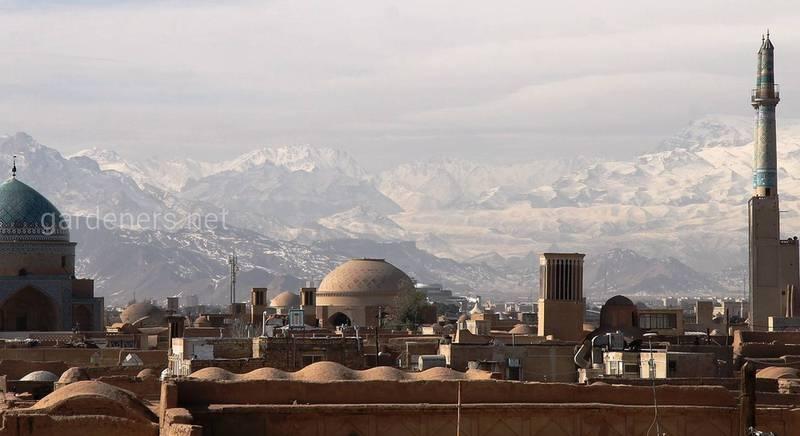 Путешествие в одну из самых загадочных стран мира - Иран