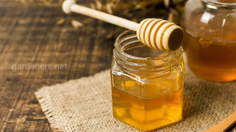 5 преимуществ меда, о которых вы не знали