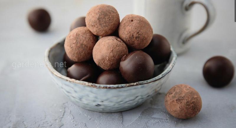Рецепт шоколадных трюфелей raw, vegan, sugar free