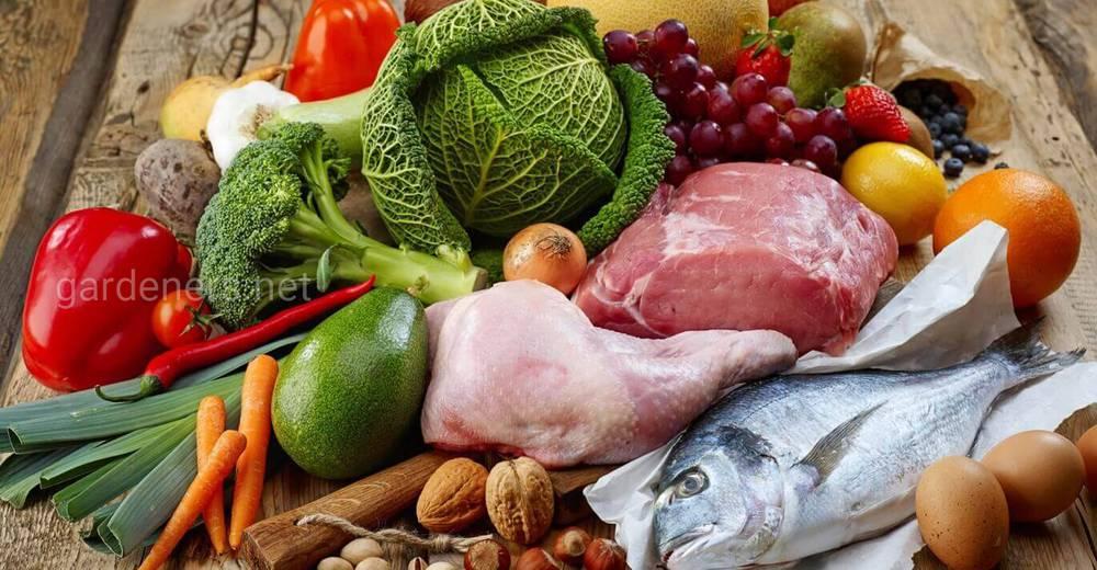 Правила хранения продуктов в холодильнике