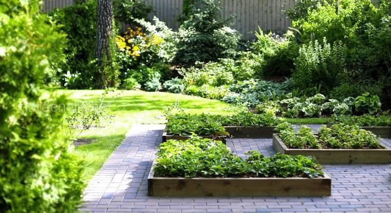 Огород и красота. Как совместить декоративность и практичность