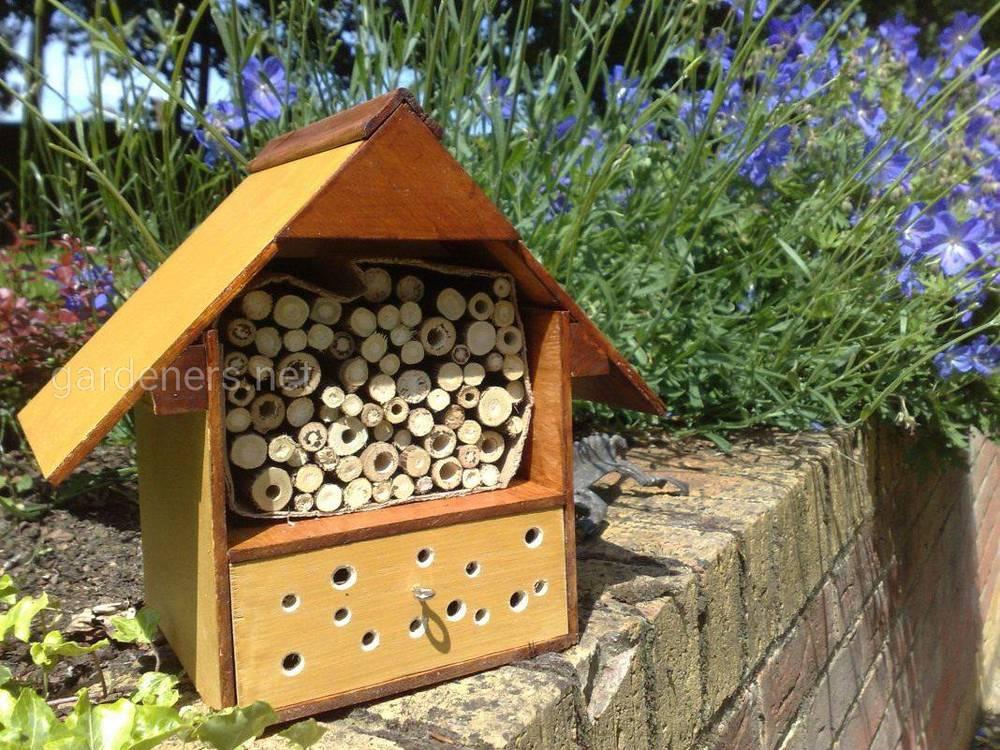 Дом для полезных насекомых