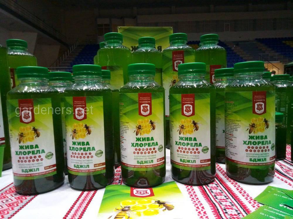 Суспензия хлореллы содержит живые клетки зеленой водоросли Chlorella vulgaris