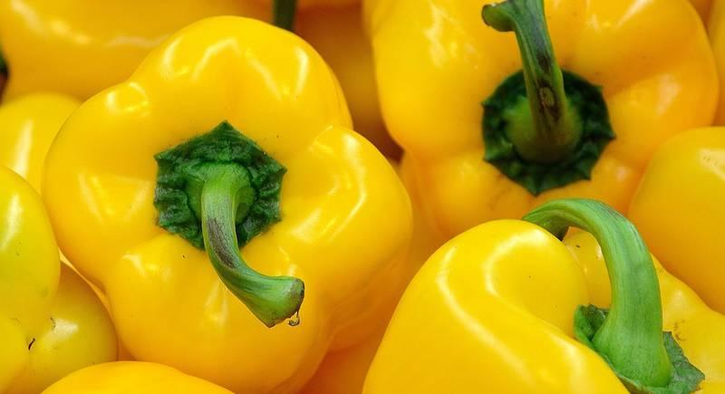pepper-22111_1920.jpg