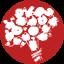 Доставка цветов Львов квіти Цілодобово