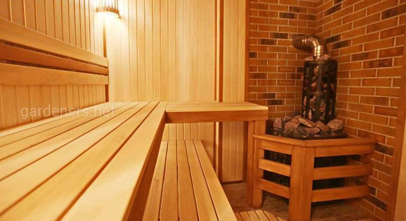 Чем полезна баня для человеческого организма