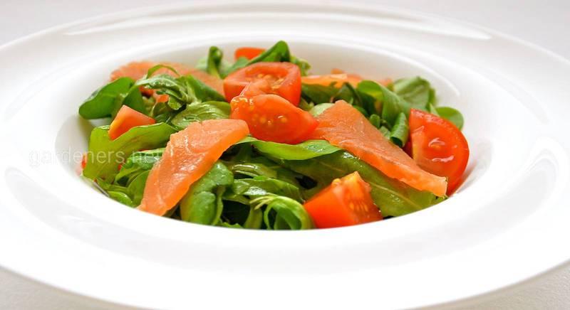 Простые и полезные рецепты салатов с семгой