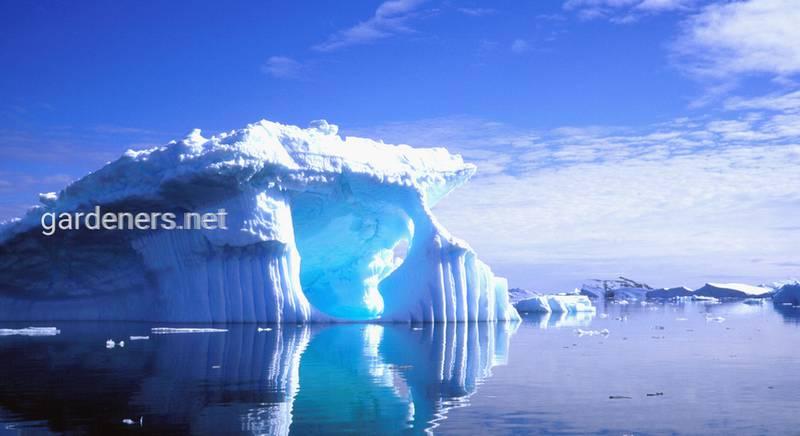 13 интересных фактов об Антарктиде