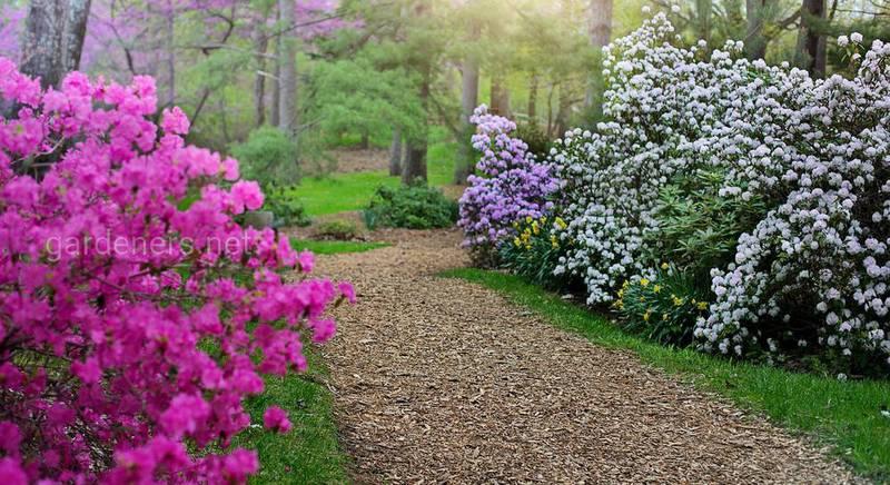 Создание сада в стиле фэнтези или эко стиле