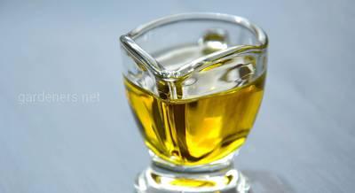 масло семян.jpg