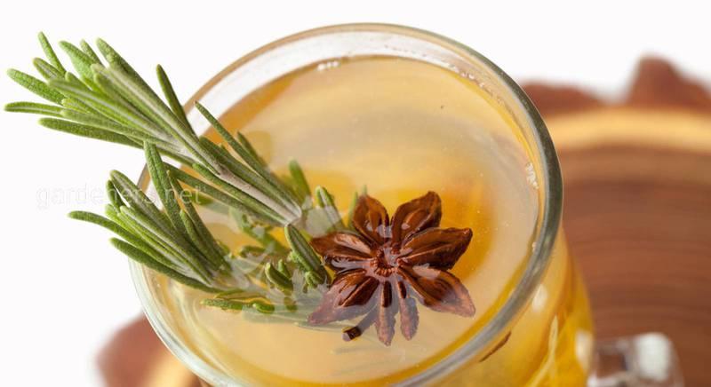 Чай с розмарином - лечит воспаление