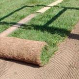 greenhutor.com