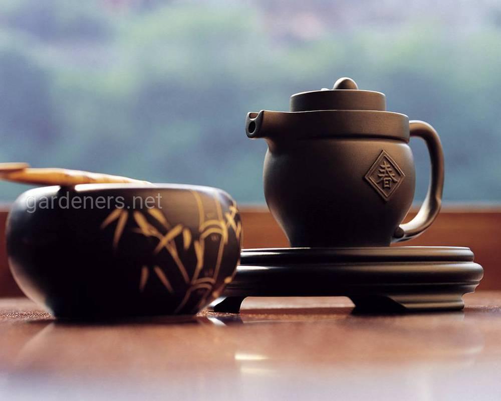 Традиції чаювання в Японії