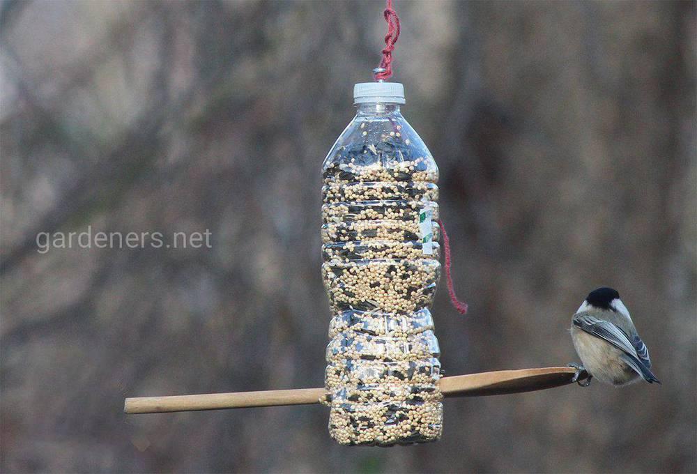 Годівниця з пластикової пляшки