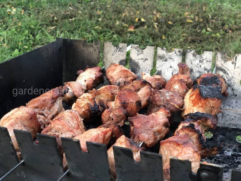 Маринад для отменного шашлыка из говядины и телятины