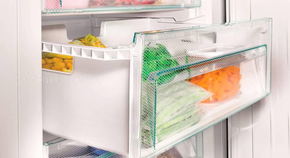 Які продукти не можна заморожувати