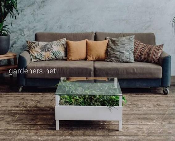 Столик с растениями