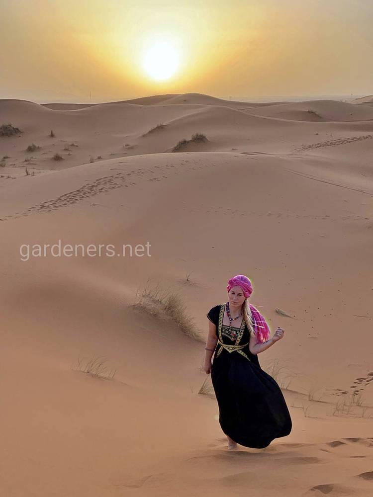 Яркие краски Марокко