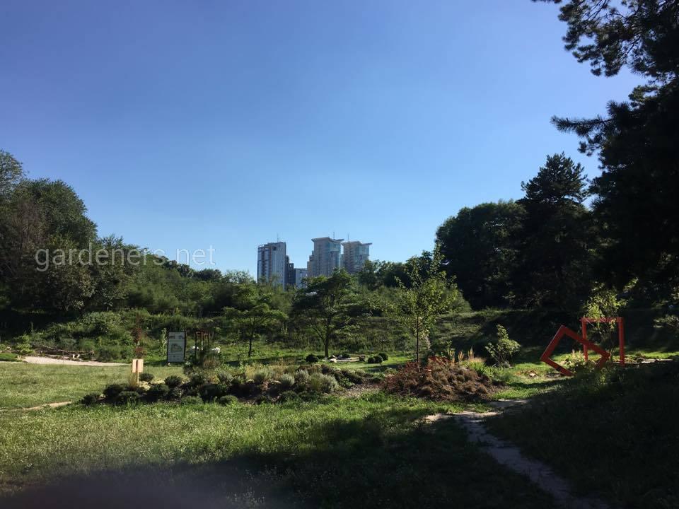 Японский уголок в Ботаническом саду им Гришка