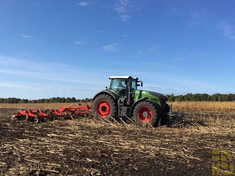 Как правильно взять пробу грунта для агрохимического анализа?