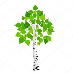 Питомник растений BEREZKI
