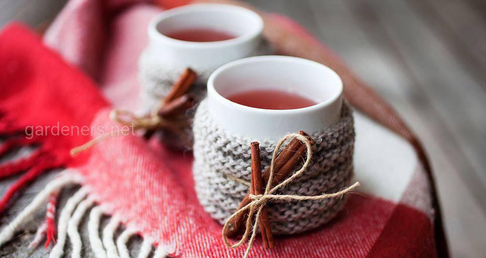 Смачний і зігрівальний зимовий чай
