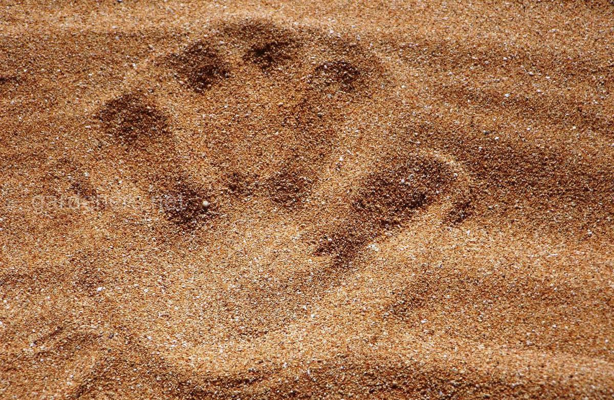 песок - дренаж