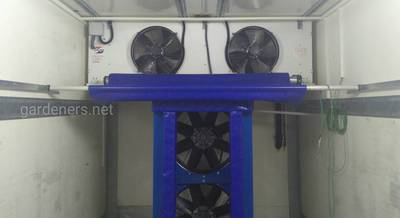 rapid cooling 2