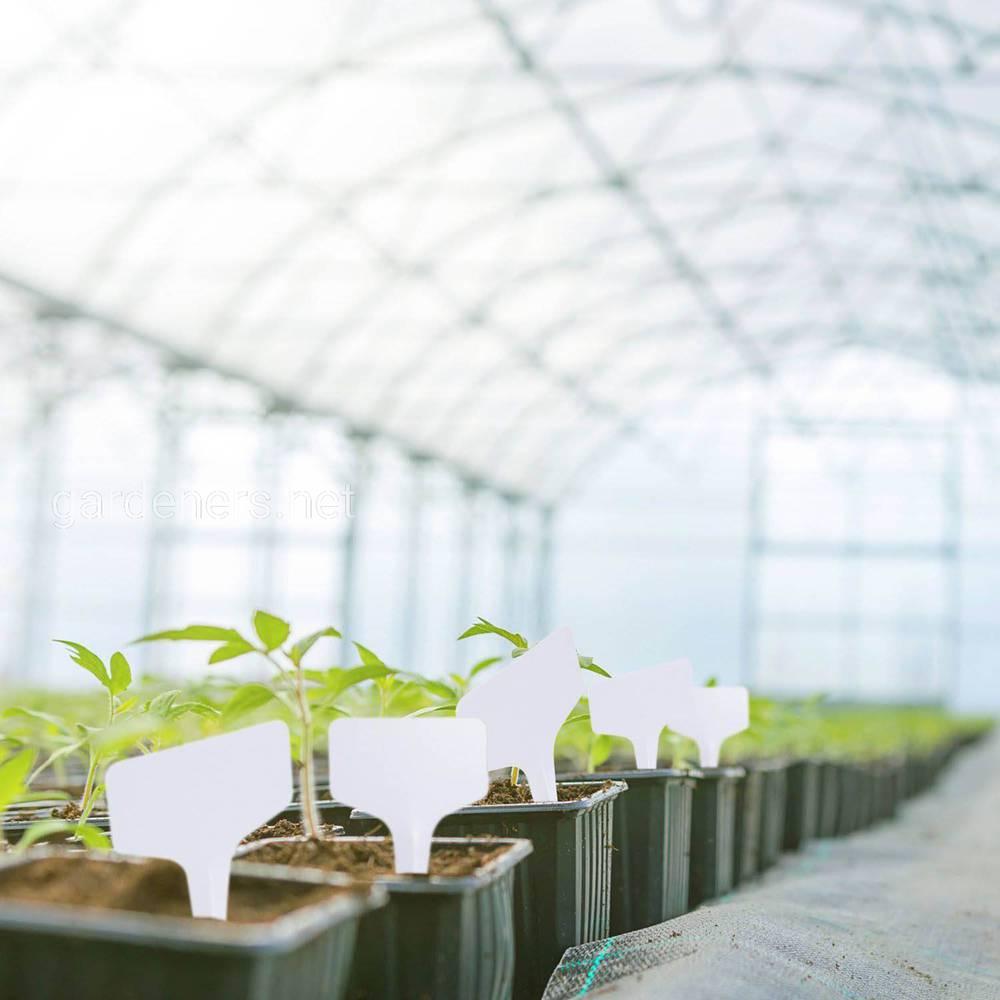 Набор садовых бирок