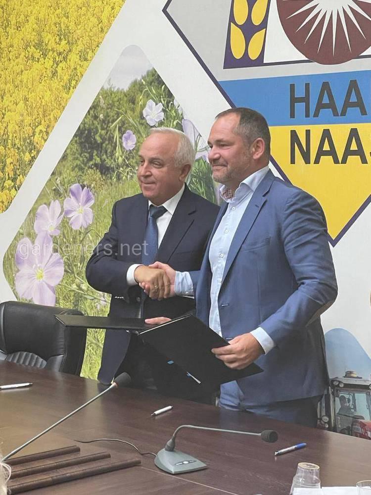Документ підписав президент установи Ярослав Гадзало