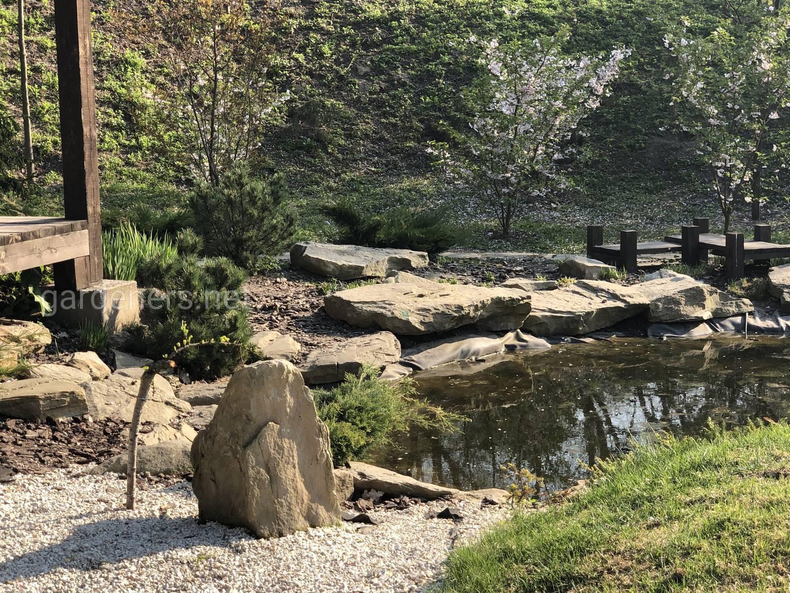 Япония в Украине. Ботанический сад им Гришка