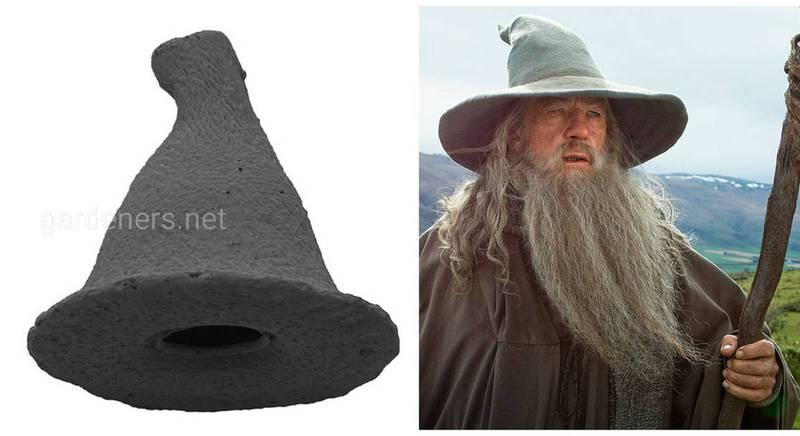 Недавно обнаруженный вид панцирных амеб был назван в честь волшебника Гендальфа