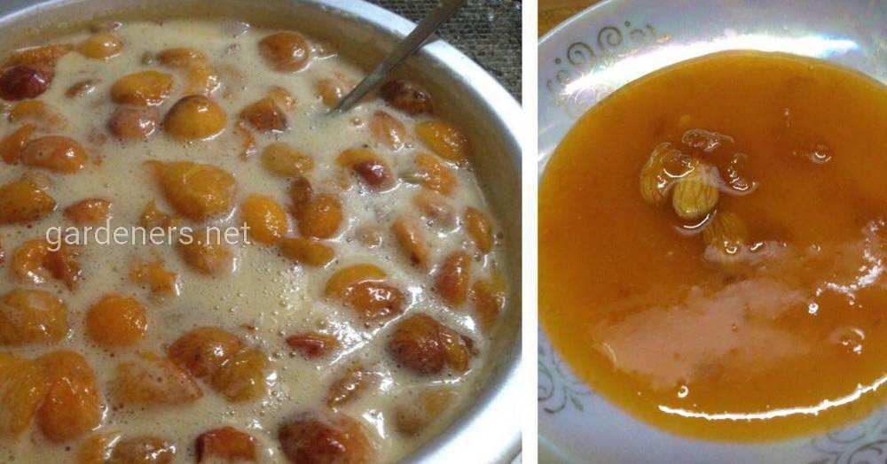 абрикосовое варенья 02