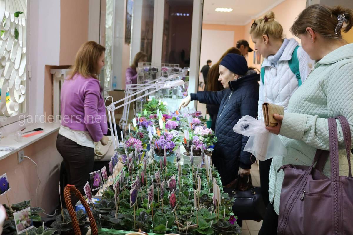 Популяризация растений, обмен опытом, размножение.