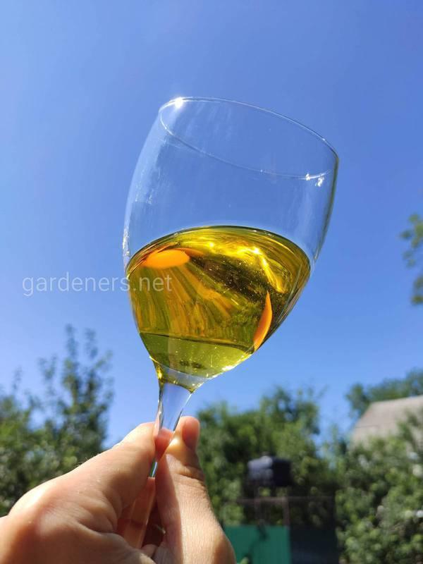 Виготовлення моцерату з олії! Які гілки та листя слід використовувати?