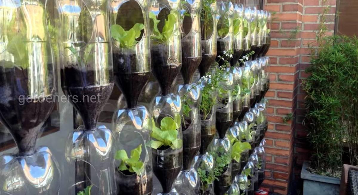 Как сделать вертикальную грядку из пластиковых бутылок