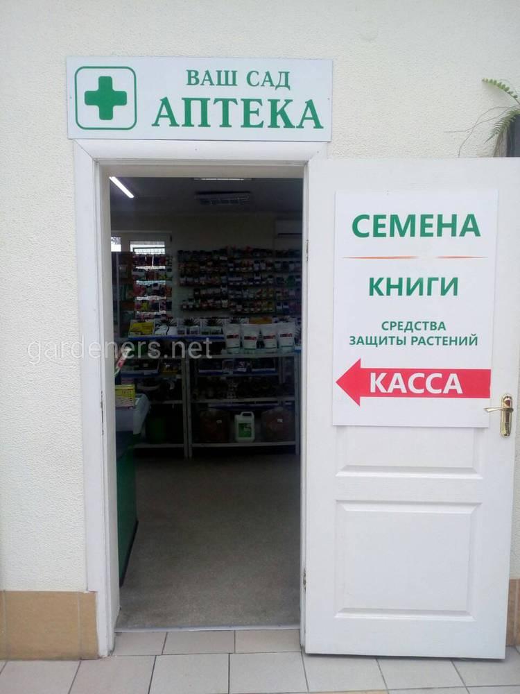 Одесса купить хлореллу