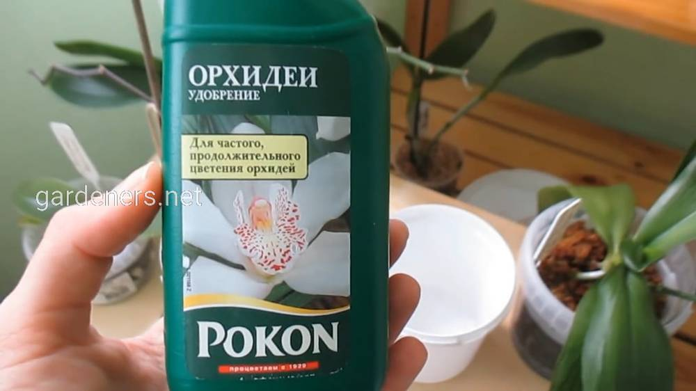 Голландское удобрение для орхидей «Pokon»