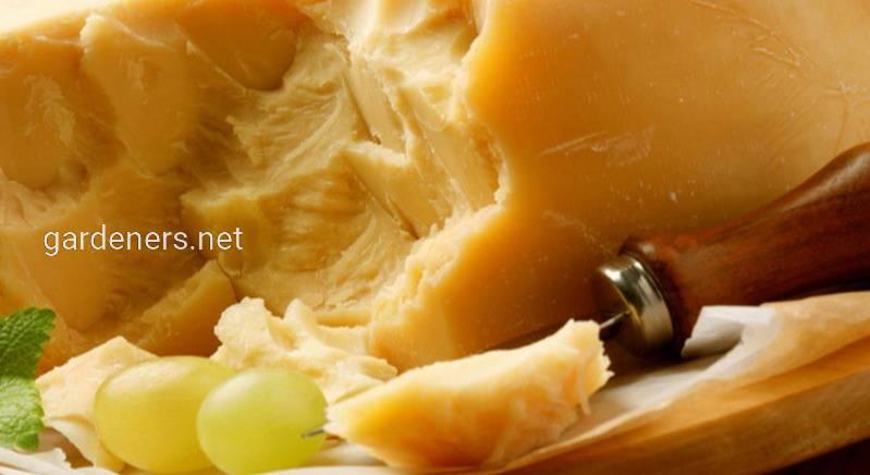 Сыр Джугас, 100 гр