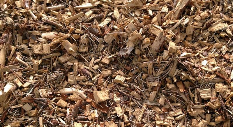 Опилки, как удобрение для земли