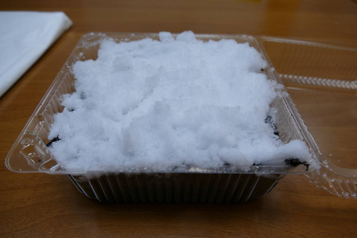 снег для петуньи
