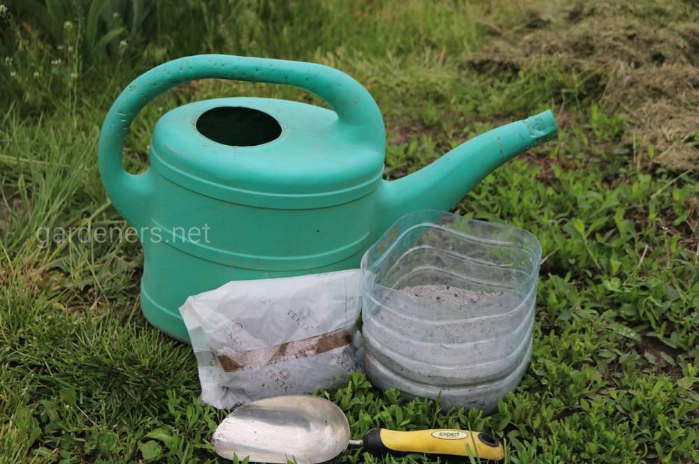 Как сделать почву мягче: топ-5 эффективных способов