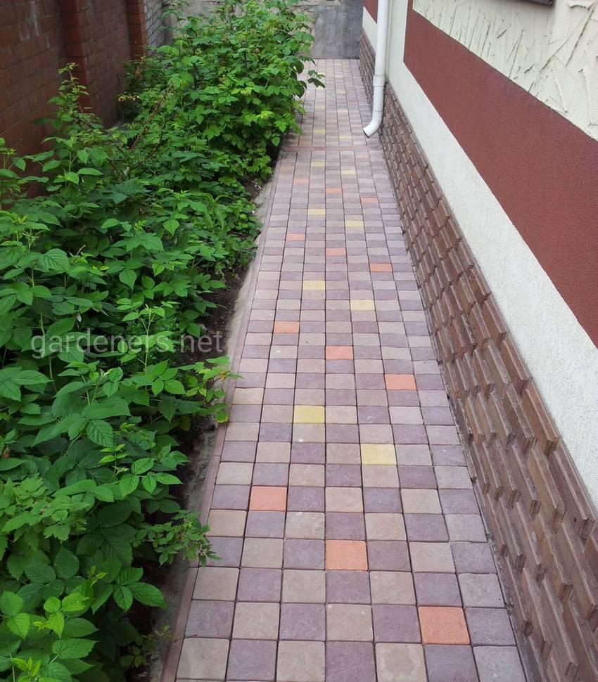 Вимощення з тротуарної плитки