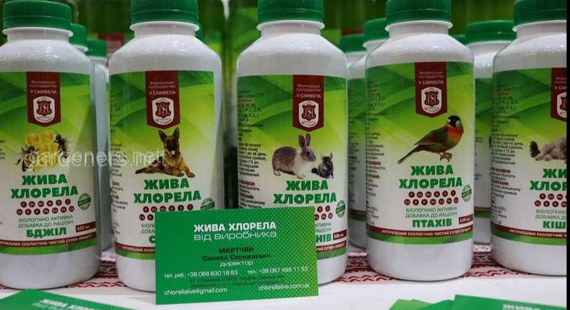 Суспензия хлореллы для кошек и собак