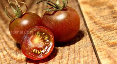 томат Черный жемчуг