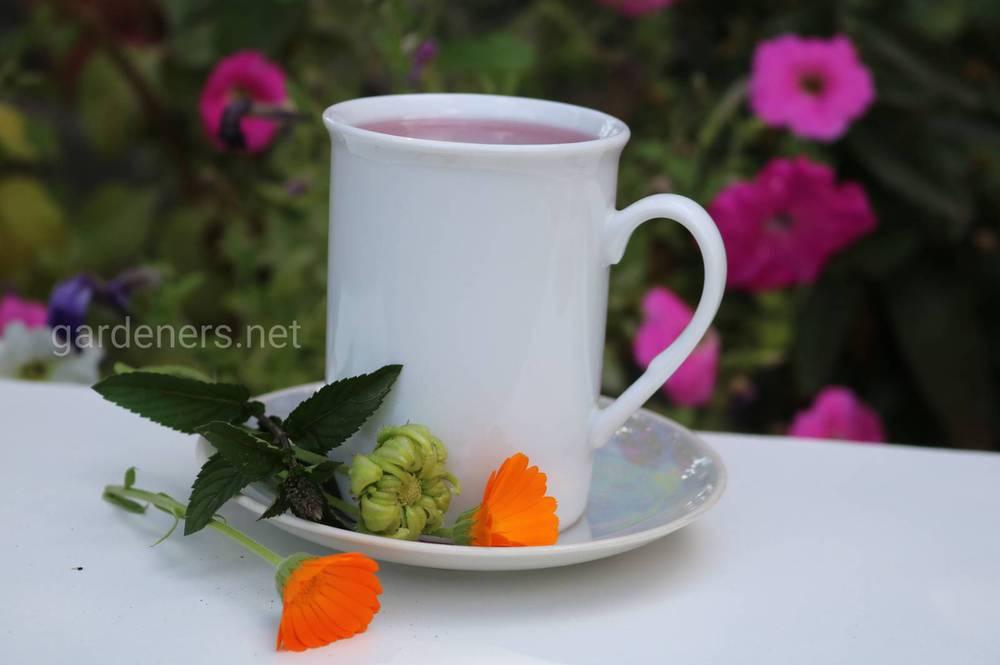 Чай и календула